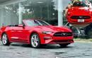 """Ford Mustang hơn 3 tỷ làm dâu đất cảng sở hữu biển """"Thần tài"""""""