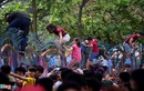Cảnh hỗn loạn ở Công viên nước Hồ Tây ngày miễn phí