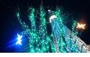 Loạt cao ốc thế giới đẹp lung linh mùa Giáng sinh