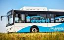 Sở GTVT TP Hồ Chí Minh: Không có chuyện ưu ái thí điểm 5 tuyến xe buýt điện