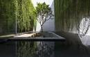 Mãn nhãn biệt thự như công viên xanh giữa lòng Sài Gòn