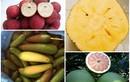"""Những loại trái cây không hạt """"giá chát"""" vẫn hút khách"""