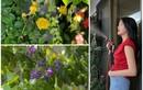 Khu vườn xanh mướt trong căn hộ của Hoa hậu Kỳ Duyên