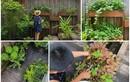 Khám phá khu vườn nhỏ xinh trong biệt thự của Tăng Thanh Hà