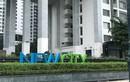 Sai phạm ở New City Thủ Thiêm của Công ty Thuận Việt: Hé lộ bất ngờ về đơn vị môi giới