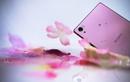 Điểm danh những smartphone màu vàng hồng tại Việt Nam
