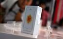 Mở hộp điện thoại iPhone SE chính hãng tại Việt Nam