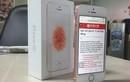 """Soi iPhone SE vàng hồng """"chính hãng"""" ở VN"""