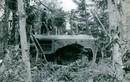 Ảnh quý về chiến sĩ Giải phóng ở miền Nam thập niên 1960