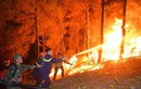 Cận cảnh 20 tiếng trong biển lửa ở vụ cháy rừng thông Hồng Lĩnh