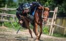 Cận cảnh CSCĐ kỵ binh Việt Nam thuần dưỡng, huấn luyện ngựa trên thao trường