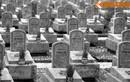 Lặng người trước chuyện tâm linh xúc động ở Nghĩa trang Trường Sơn