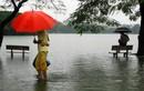 Những khoảnh khắc ngập lụt kinh điển ở Hà Nội và TP HCM