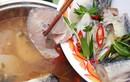 Nhiều loại cá tầm Trung Quốc bán trên thị trường ngoài danh mục được cấp phép?