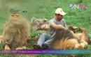 """Rùng mình cảnh """"thì thầm"""" với sư tử châu Phi"""