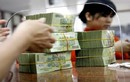 Kênh đầu tư nào sinh lời cao năm 2019, người tiêu dùng Việt nên xuống tiền?