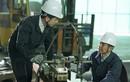 Bắc Á Bank ưu đãi cho vay từ dự án tài chính nông thôn II (RDFII)