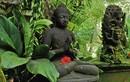 Phật dạy: Luật nhân quả đối với người ác khẩu