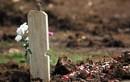 """Mỹ: Nhân viên nghĩa trang bị """"chôn sống"""" khi đang hăng say đào huyệt"""