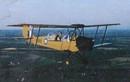 Vị vua duy nhất nước Việt sở hữu 2 máy bay riêng