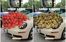 Ảnh chế xe hoa phong cách đặc sản vùng miền cực bá đạo của netizen