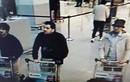 Phóng thích nghi phạm vụ đánh bom khủng bố ở Bỉ