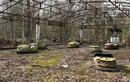 Ám ảnh về thị trấn ma Chernobyl sau 31 năm thảm họa