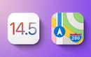 """Tính năng mới của iOS 14.5 """"hé lộ"""" thời điểm ra mắt iPhone 12S"""