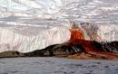 Vén màn bí ẩn dòng thác máu kỳ dị giữa băng tuyết ở Nam Cực