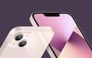 Săm soi loạt thiếu sót trên iPhone 13 gây thất vọng tràn trề