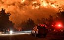 Cảnh báo nóng: Khủng hoảng khí hậu hủy diệt văn minh loài người!