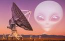 """Bắt trọn tín hiệu """"bật tắt"""" bí ẩn: Đến từ hành tinh khác?"""