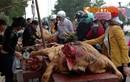 Xem cảnh mổ bê ngay giữa chợ đông người