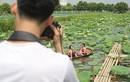 Thiếu nữ đánh đổi làn da trắng, lội hồ sen chụp ảnh dưới nắng