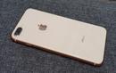 iPhone 8 Plus giảm giá 1,5 triệu đồng đầu tháng 4