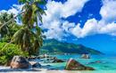 Khám phá những miền nhiệt đới xanh tươi trên khắp hành tinh