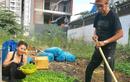 Bố mẹ Hồ Ngọc Hà làm nông dân dù giàu nứt đố đổ vách