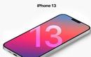 iPhone 13 sẽ ra mắt vào tháng 9?