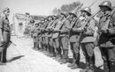 Những quốc gia sát cánh cùng phát xít Đức đánh Liên Xô có động cơ gì?
