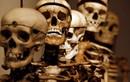 Khám phá bảo tàng tội phạm ở Italia