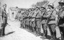 Các quốc gia sát cánh cùng phát xít Đức đánh Liên Xô là ai?
