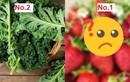 12 loại rau quả tồn dư thuốc bảo vệ thực vật nhiều nhất