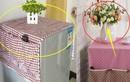 3 nguyên tắc khi đặt tủ lạnh: Gia chủ ngày càng giàu có