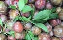 Bí kíp chọn mận ngon do chủ sạp hoa quả chia sẻ