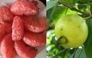 5 loại quả giúp da trắng bóc, bụng phẳng, ăn vào buổi tối càng hiệu quả