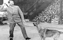 Khám phá chú chó cưng được Hitler yêu chiều hơn cả tình nhân