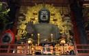 Khám phá ngôi chùa có bức tượng Phật bằng đồng mạ vàng lớn nhất thế giới