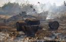 Cháy rừng Amazon thảm khốc, Brazil đối phó thế nào?