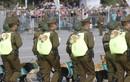 Quân đội Chile diễu binh cùng chó nghiệp vụ theo kiểu chưa từng thấy