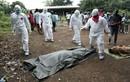 Nguy cơ bùng phát dịch bệnh Ebola ở CHDC Congo